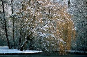 Voldelpark met sneeuw