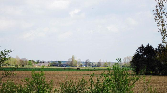 Foto landschap Achterhoek nabij Terborg