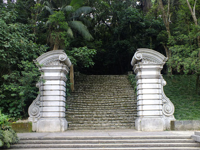 Foto zuilen trap leidend naar natuur
