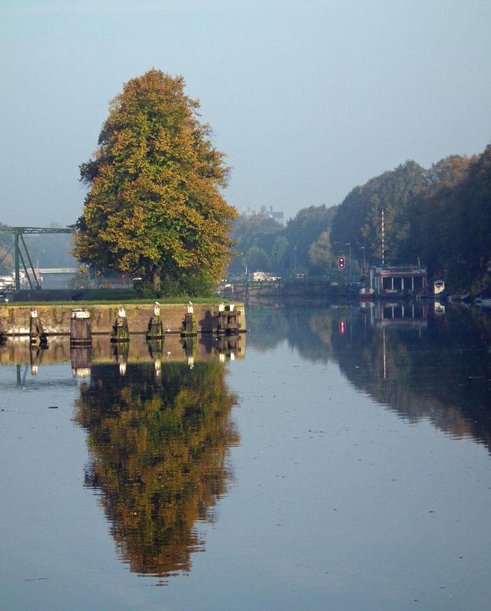 Foto van kade met boom en spiegelbeeld in het water