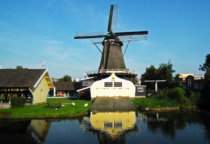 Foto van molen De Ster
