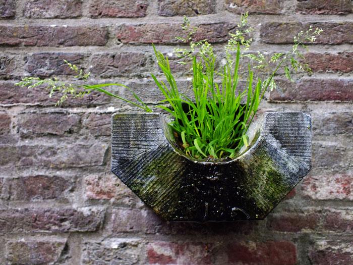 Foto van gras in regenwaterafvoer
