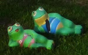 Foto van beeldje van Kermit en kikkervrouw liggend op gras