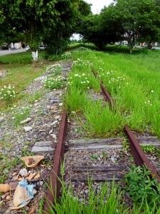 Foto van verlaten en overwoekerde rails