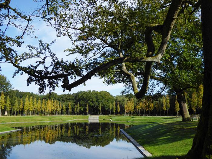 Foto van vijver in Baarnse Bos