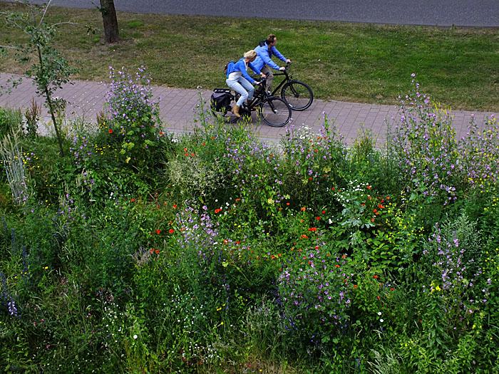 Foto van twee fietsers naast begroeiing
