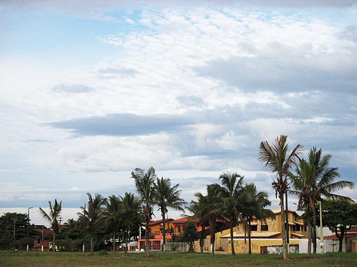 Foto van palmen en wolkenlucht