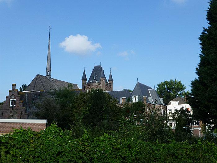 Foto van torentjes en daken achter bosjes