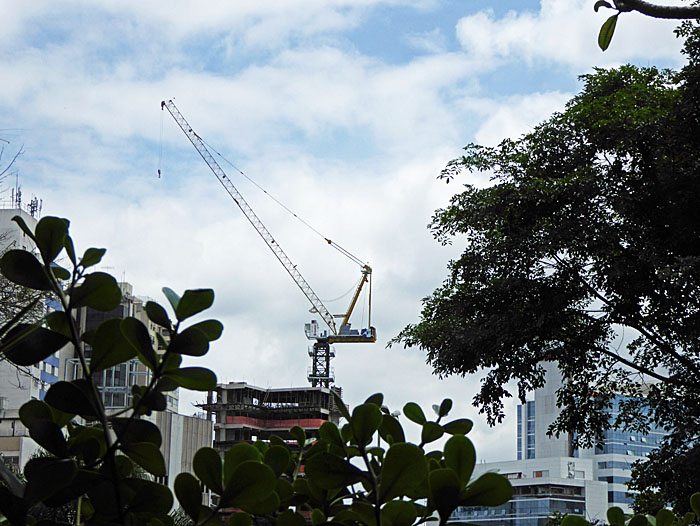 Foto van hijskraan tussen gebouwen en bomen