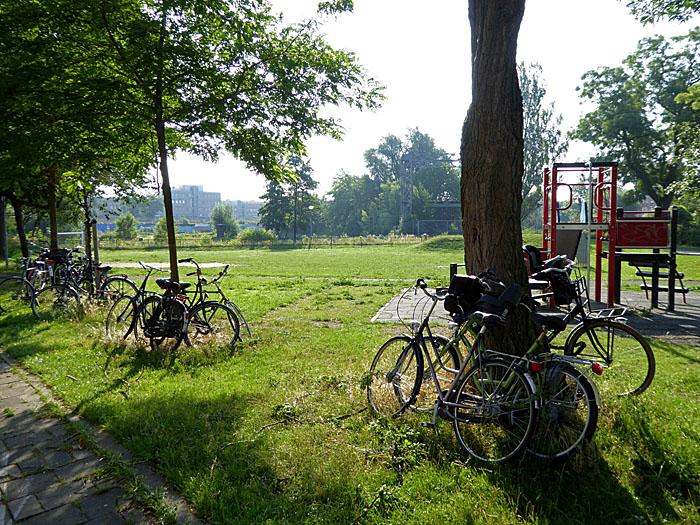 Foto van in park gestalde fietsen