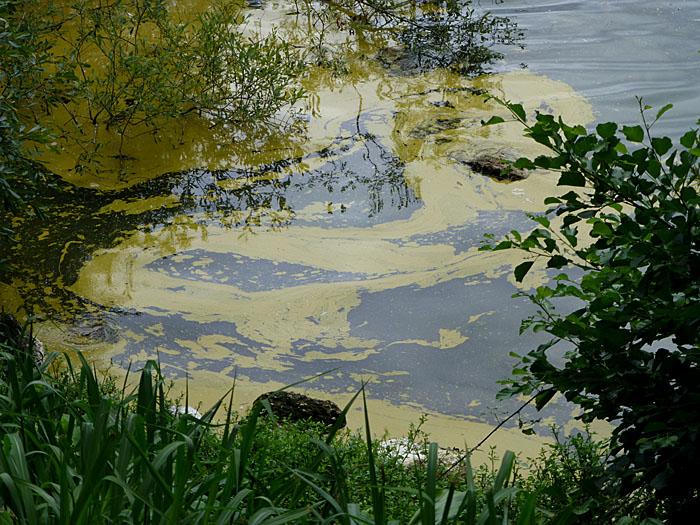 Foto van zwavelvlekken in water