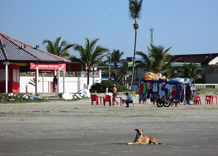 Foto van hond liggend op strand en strandtenten