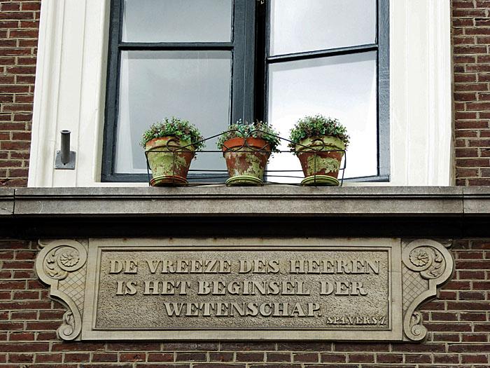 Foto van planten in vensterbank en gevelsteen