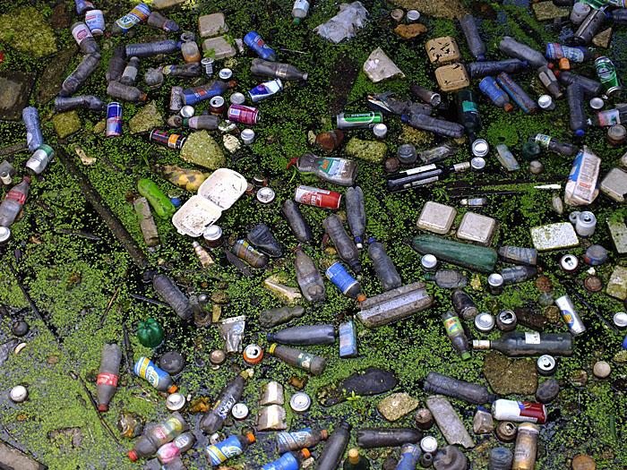Foto van afval in gracht tussen kroos