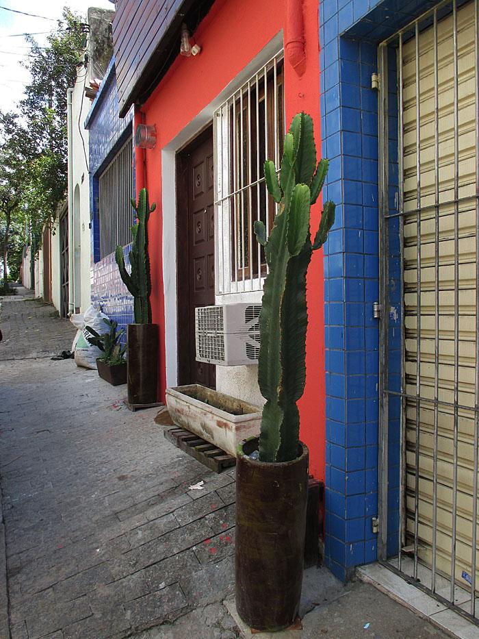Foto van rood huis met cactussen
