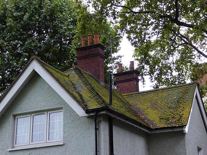 Foto van dak met schoorstenen