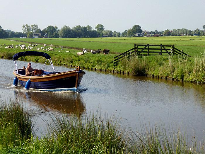 Foto van bootje tussen weilanden met schapen
