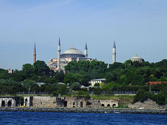 Foto van moskee tussen groen