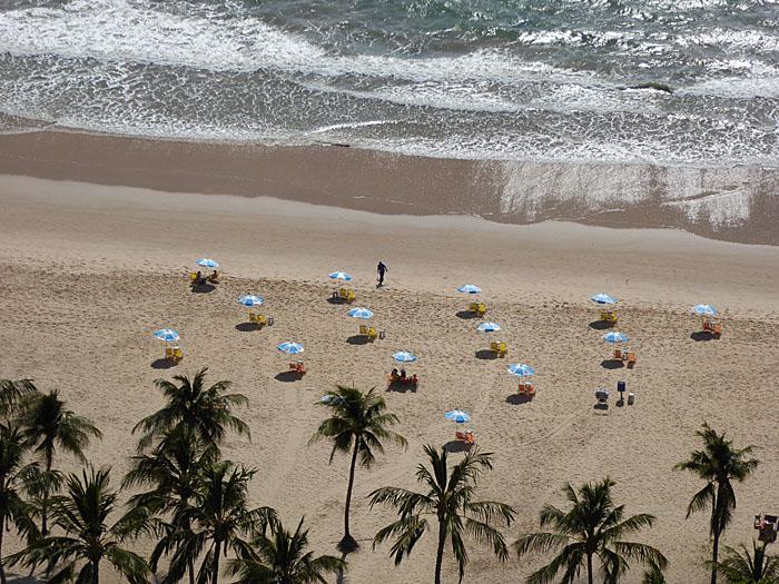 Foto van strand met palmen en parasols