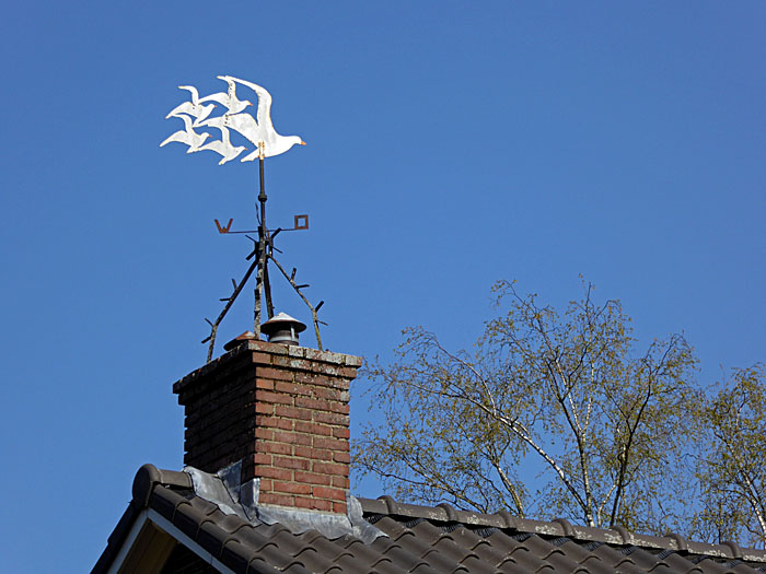 Foto van windwijzer in de vorm van vogels