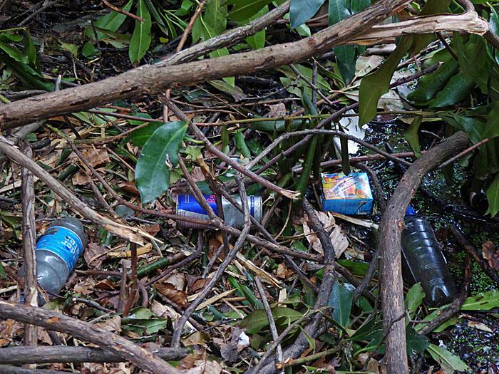 Foto van afval in bos
