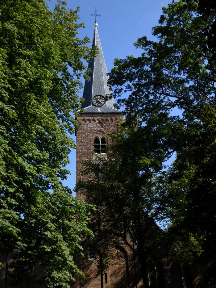 Foto van kerktoren tussen bomen