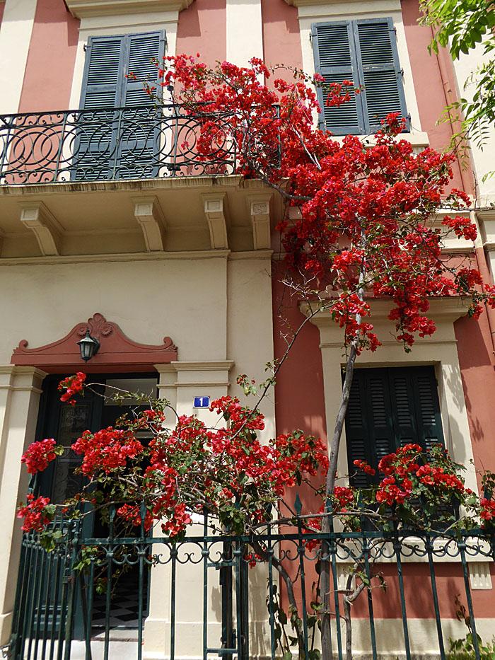 Foto van gevel met rode bloemen