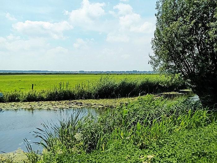Foto van landschap