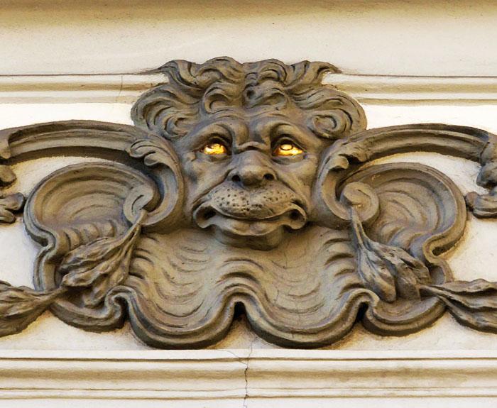Foto van leeuw die de ogen ten hemel richt