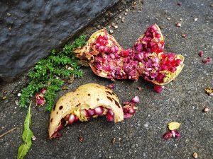 Foto van granaatappel op de grond