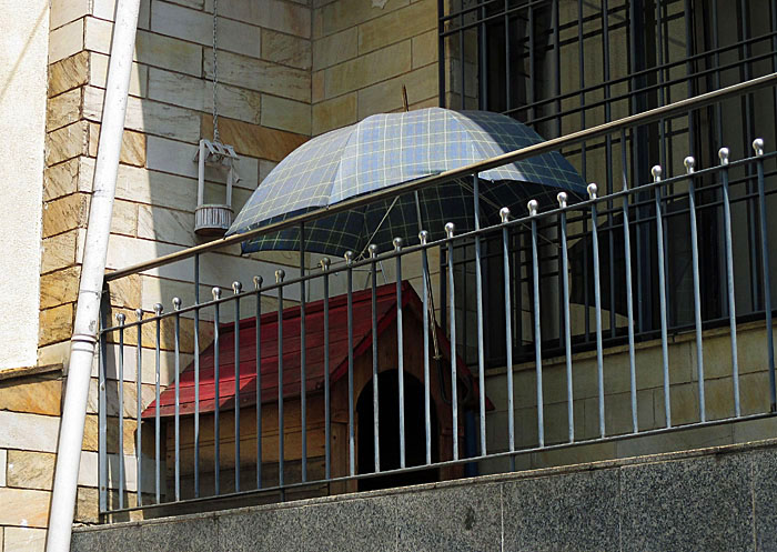 Foto van hondenhok en parasol
