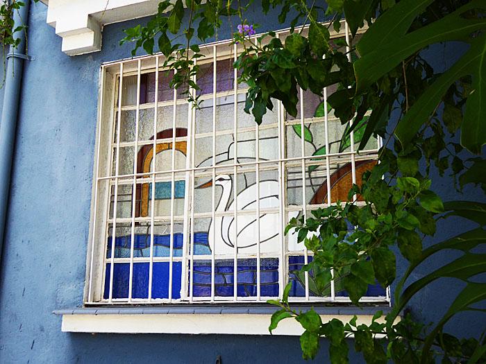 Foto van raam met afbeelding van zwaan achter tralies