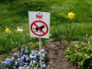 Foto van bordje tegen hondepoep