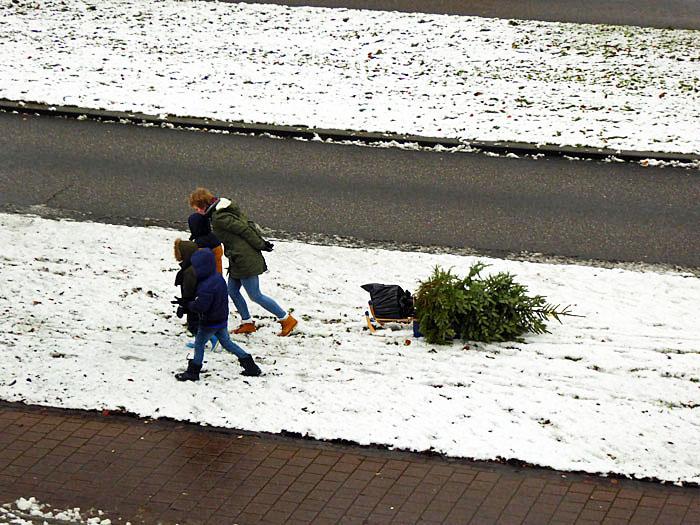 Foto van familie met kerstboom op sleetje
