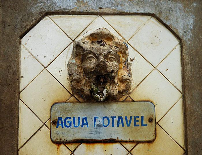 Foto van leeuwenkop, die water geeft