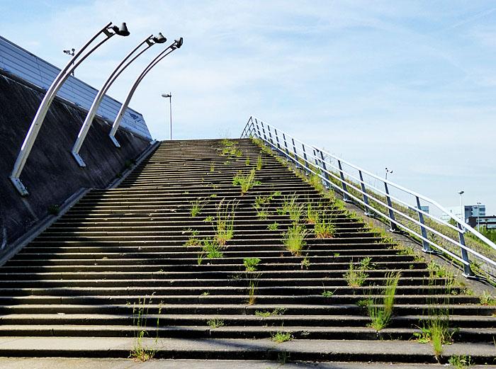 Foto van trap naast brug