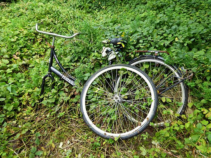Foto van kapotte fiets in het groen
