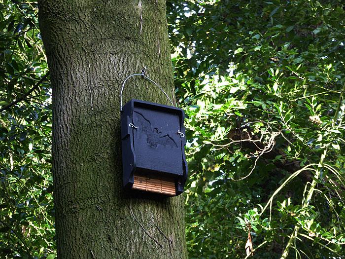 Foto van nestkast voor vleermuis