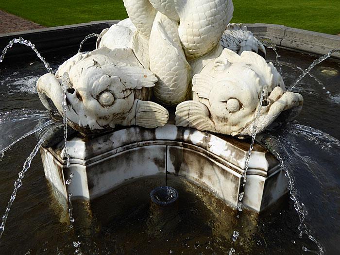 Foto van vissen (deel van fontein)