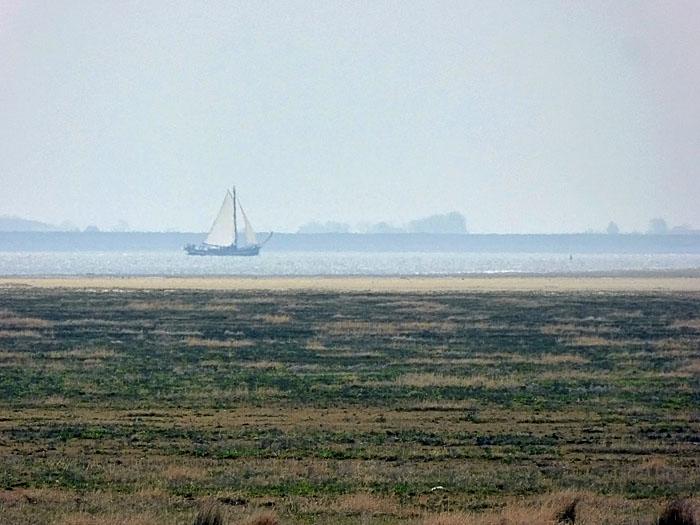 Foto van boot op Waddenzee