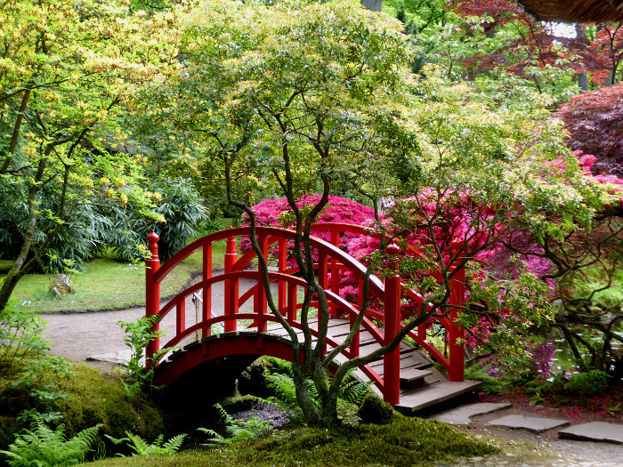 Foto van rood bruggetje in tuin
