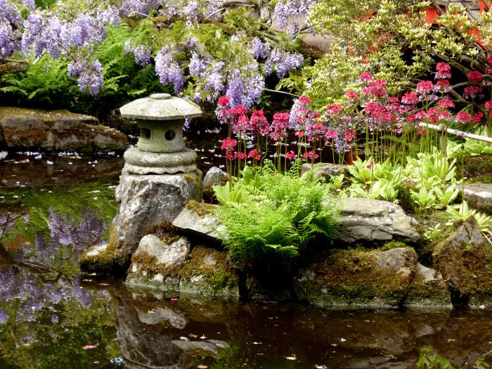 Foto decoratie en bloemen in tuin