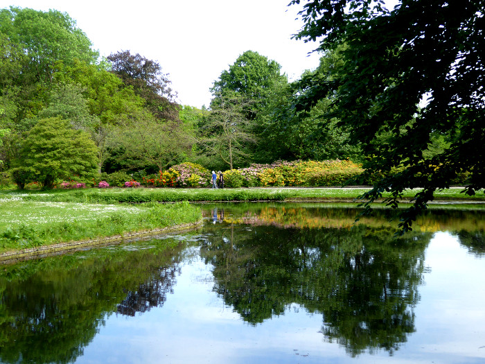 Foto van vijver in park