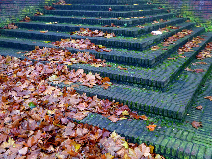 Foto van herfstbladeren op trap