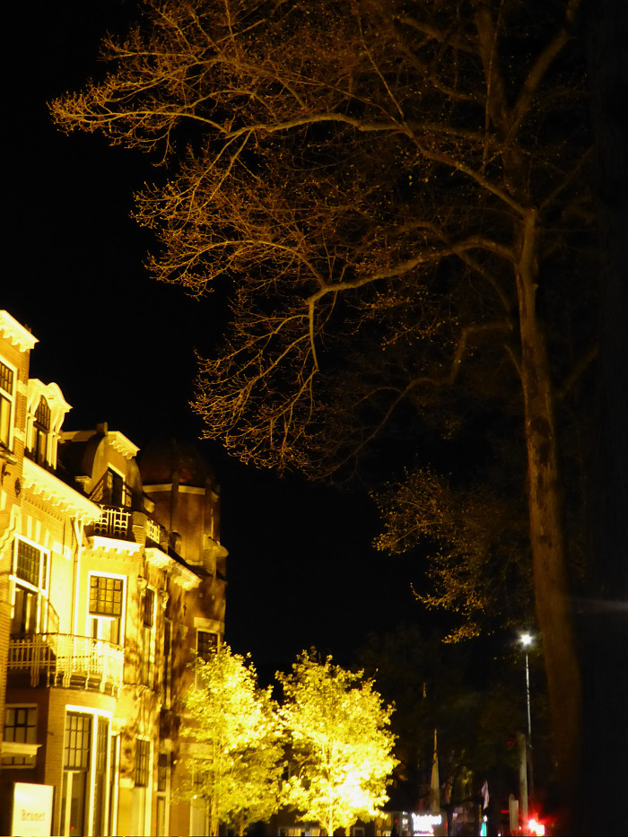 Foto van huizen bomen bij kunstlicht