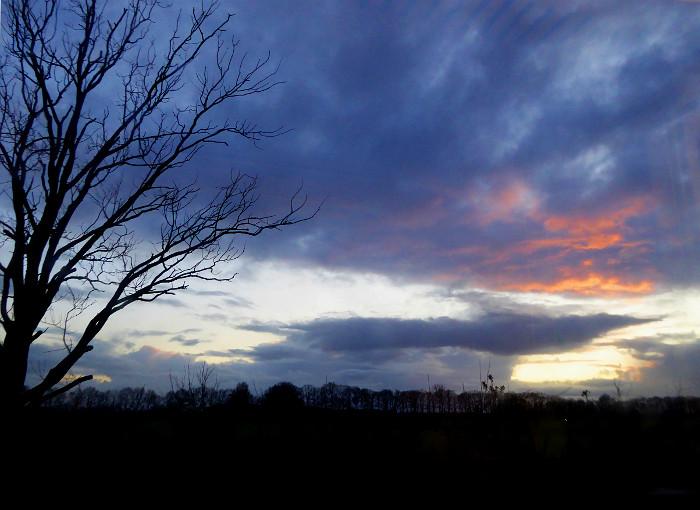 Foto van boom, wolken en zonsondergang