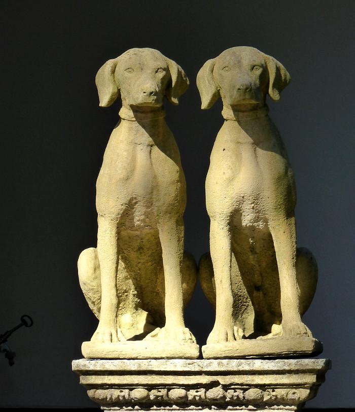 Fot van beeld van twee honden