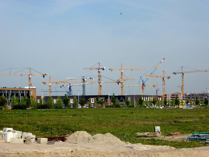 Foto van veel hijskranen in nieuwbouwwijk