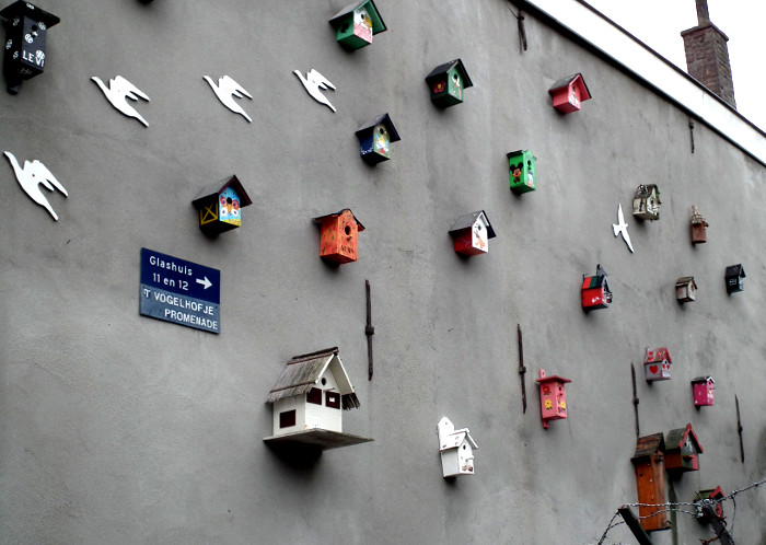 Foto van kleurige vogelhuisjes aan muur