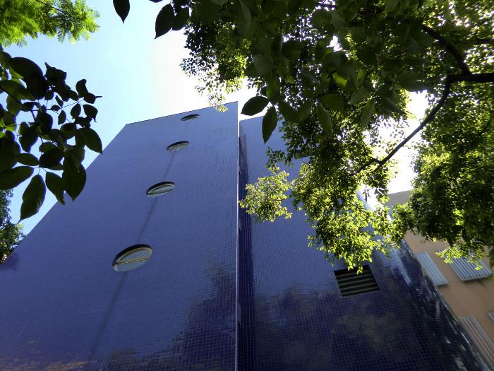 Foto van blauw gebouw en groene boomtak